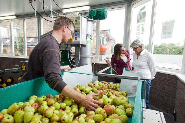 fruitpersen bij Oudenbosch