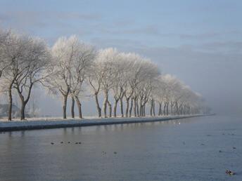 Bomen Van Starkenborghkanaal