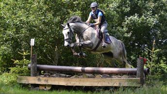 OENTSJERK - SGW Paarden en Pony's