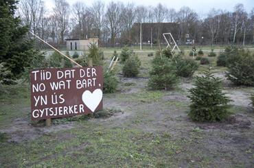 Gytsjerk - kerstbomen