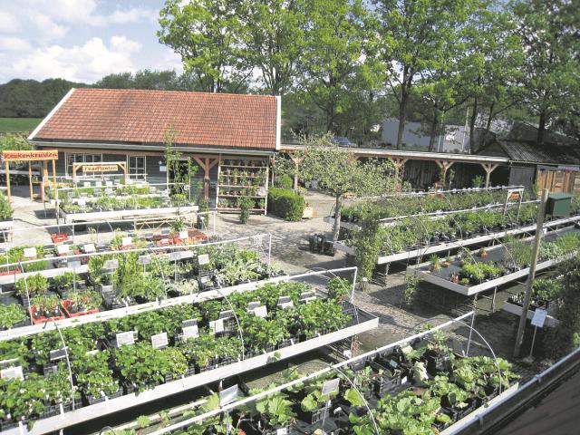 Buitenpost - kruidhof plantenactie