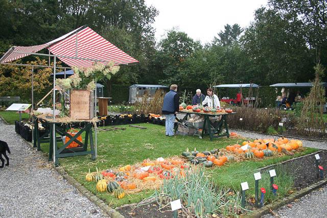 Buitenpost - oogstdag en fruitshow