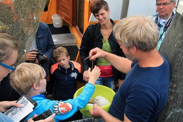 ZOUTKAMP - Demonstratie Garnalen vissen