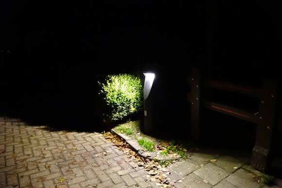 visvliet licht